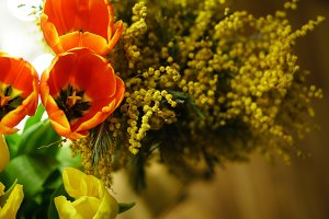 Flower bouquet. Mimosa and tulips