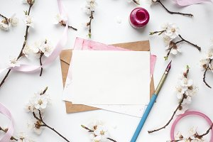 card and apricot blossom