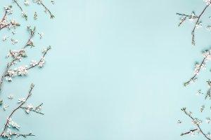 Frame with spring cherry blossom