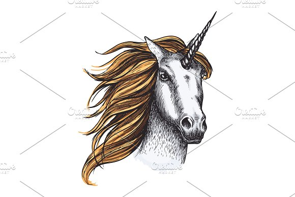 Unicorn Horse Vector Sketch Fairy Tale Animal