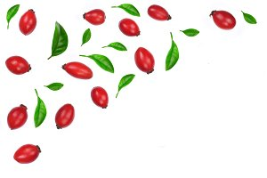 rosehip berries decorated with green leaves isolated on white background. Flat lay pattern. Top view