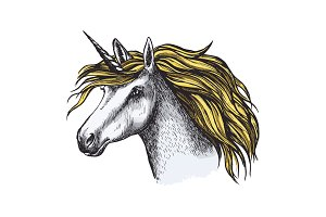 Unicorn horse fairy tale animal head vector sketch