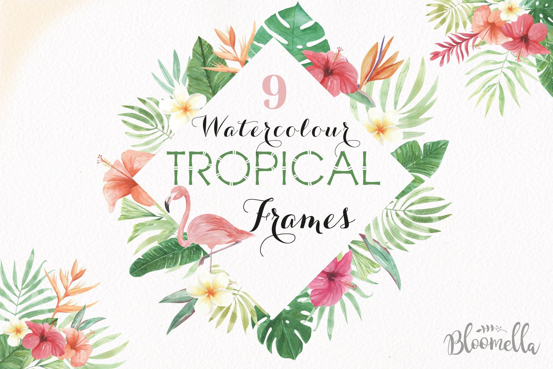 tropical watercolor frames flamingo illustrations