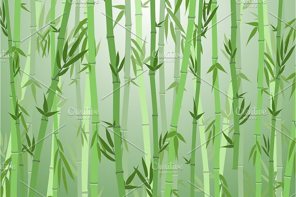 Bamboo Forest Landscape Background