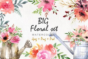 Big floral set. Watercolor flowers