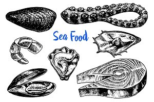 Mussels and octopus, oyster and salmon steak, tiger shrimps, sea shell. Seafood for the menu. River and lake or sea creatures. Freshwater aquarium. Engraved hand drawn in old vintage sketch.