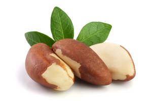Brazil nuts with leaves isolated on white background closeup. Full depth of field