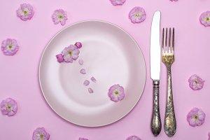 empty round pink ceramic plate