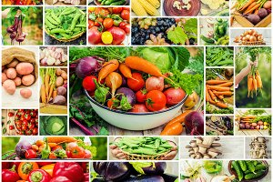 Collage of different vegetables.