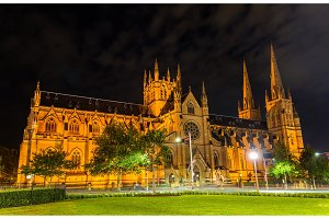 St Mary Cathedral in Sydney at night - Australia