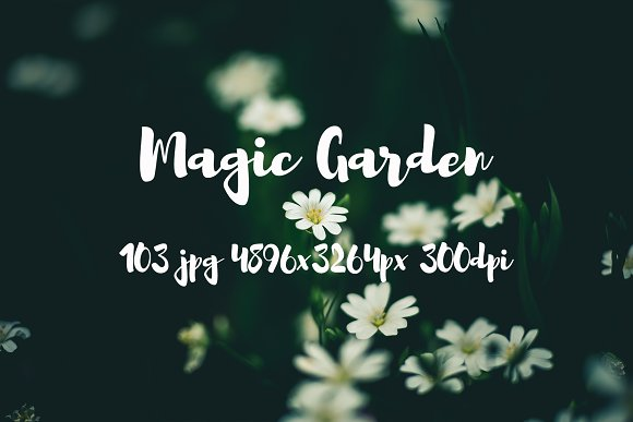 Magic Garden Pack