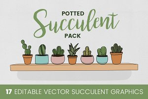 Potted Succulent Pack