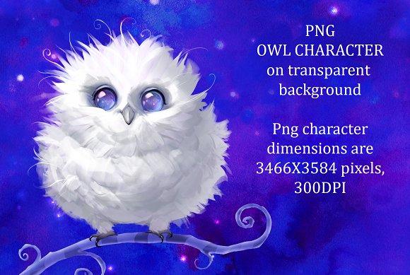 White Fluffy Owl