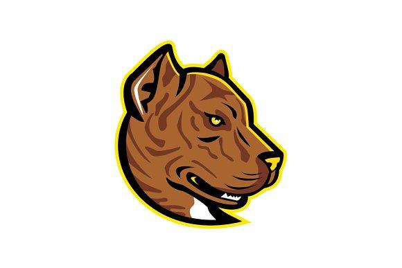 Spanish Bulldog Or Spanish Alano Mas
