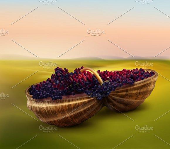 Grape In Basket