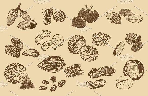 Natural Organic Nuts Elements Set
