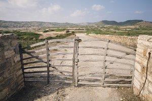 Acebuche barrier