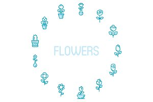 13 Flowers Icon Color & Outline