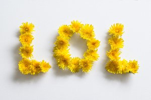 "Dandelions forming ""lol"""