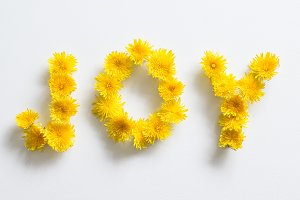 "Dandelions forming ""joy"""