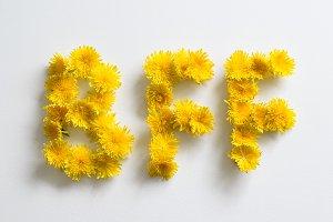 "Dandelions forming ""bff"""