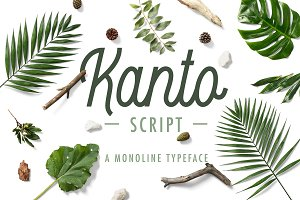 Kanto Script | A Monoline Typeface