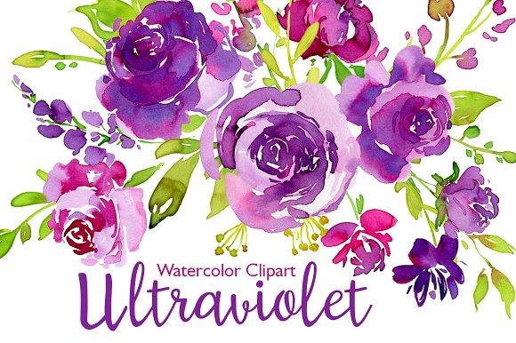 Ultraviolet Watercolor Roses Flowers