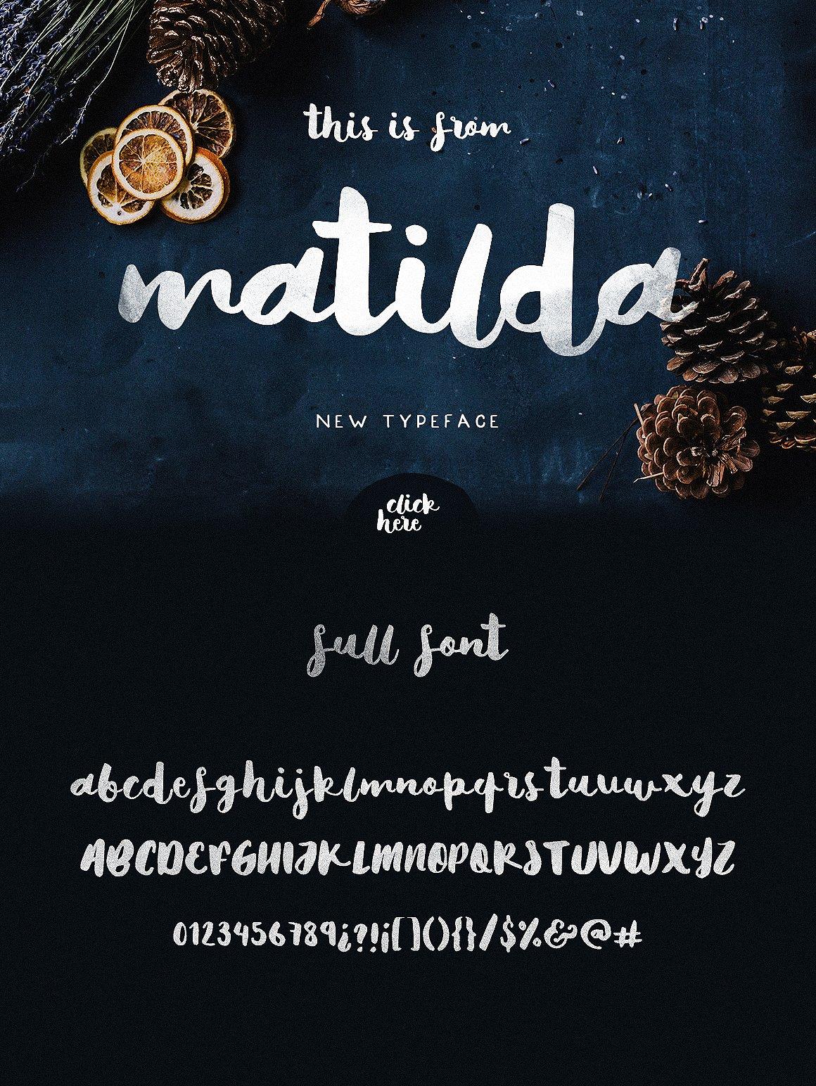 Typographers Mammoth Font Bundle