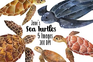 Watercolor Sea Turtles Clipart