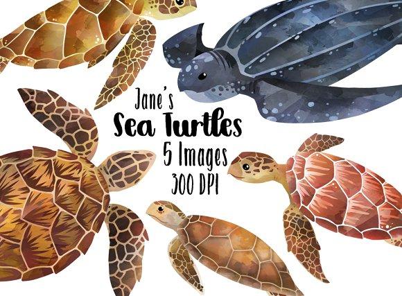 Watercolor Sea Turtles Clipart
