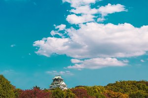 Osaka Castle during the spring season at Osaka, Japan