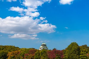 Osaka Castle during the spring season at Osaka, Japan.