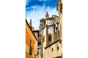 Facade details of the Toledo Cathedral in Spain