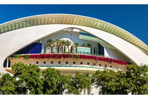Arts Palace of Queen Sofia in Valencia, Spain