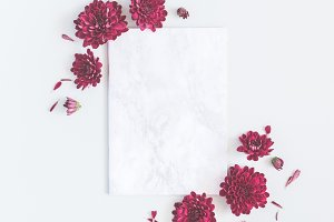 Paper blank, chrysanthemum flowers