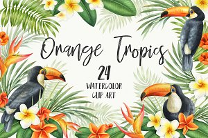 Watercolor Orange Tropics. Toucan.