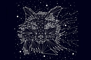 Portrait of a fox , constellation