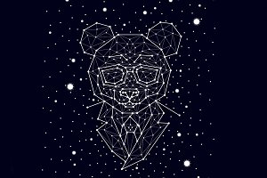 constellation , bear with glasses