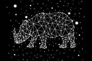 rhino constellation