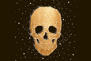 constellation, skull