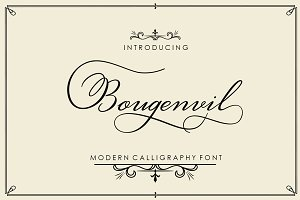 Bougenvil