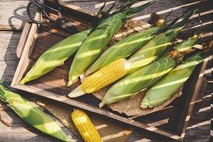 Fresh corns