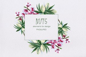 nuts. design elements