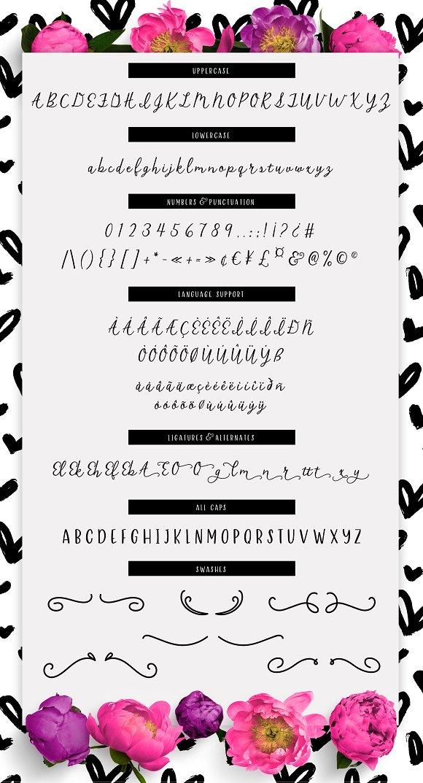 Crush Script Font in Script Fonts - product preview 5