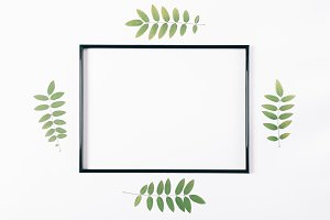 Empty frame for text and plant twigs