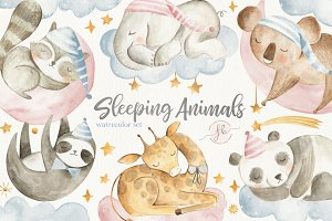 Sleeping Animals