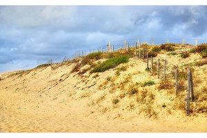 Beach on the Atlantic Ocean near Seignosse - France