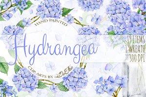 Hydrangea Watercolor Clip Art