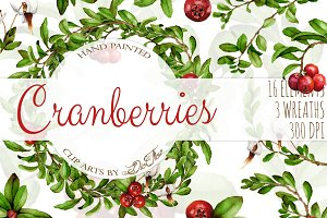 Cranberries Watercolor Clip Art