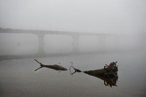 Bridge through river in fog